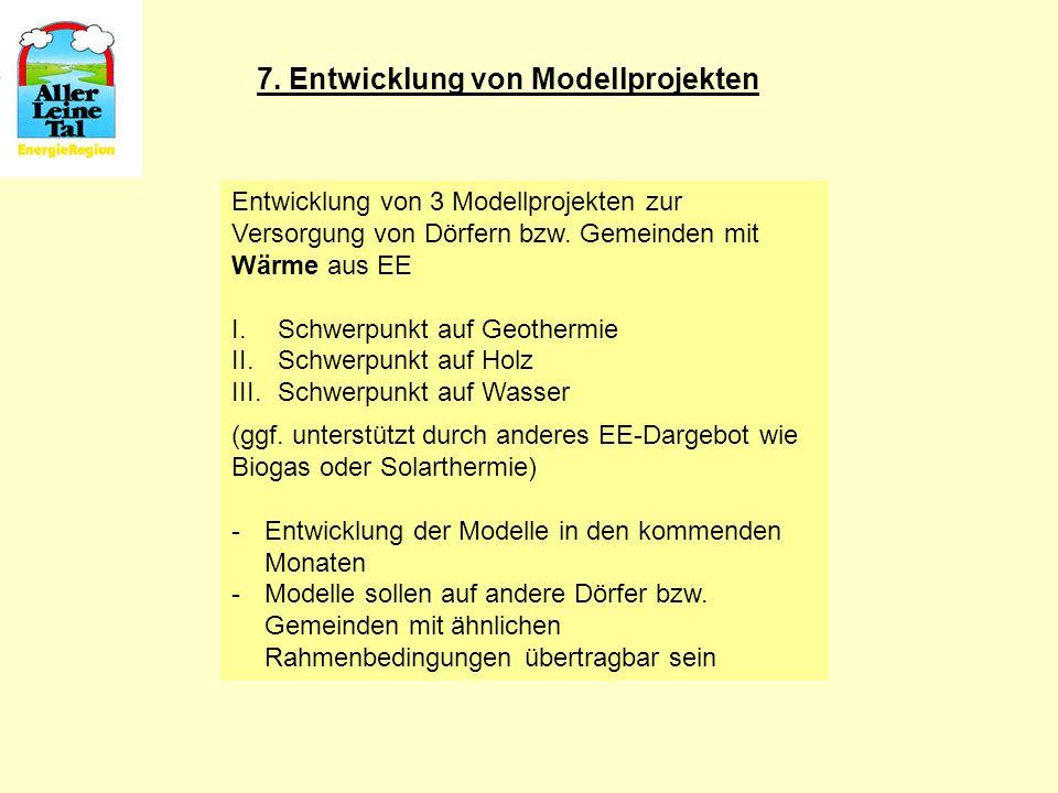 7. Entwicklung von Modellprojekten