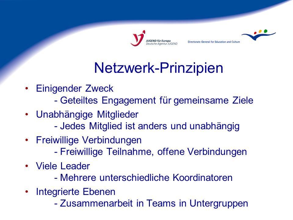 Netzwerk-Prinzipien Einigender Zweck - Geteiltes Engagement für gemeinsame Ziele.