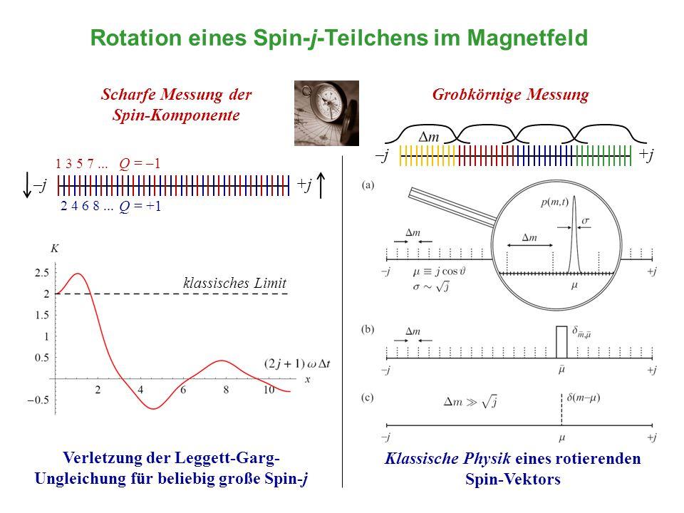 Rotation eines Spin-j-Teilchens im Magnetfeld