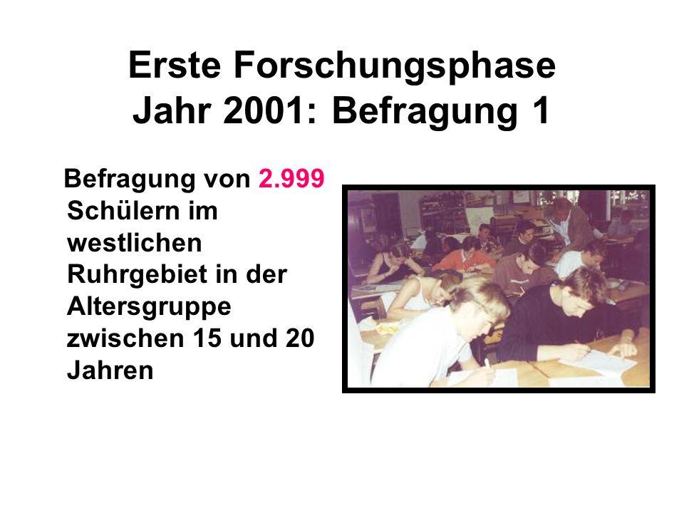 Erste Forschungsphase Jahr 2001: Befragung 1