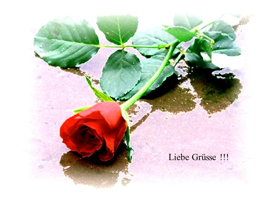 Liebe Grüsse !!!