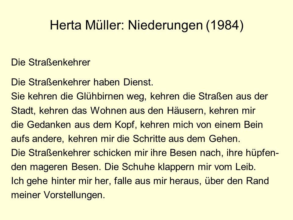 Herta Müller: Niederungen (1984)