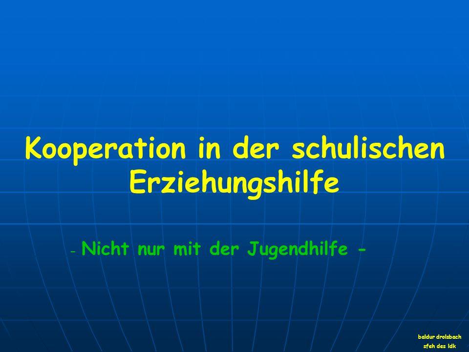 Kooperation in der schulischen Erziehungshilfe