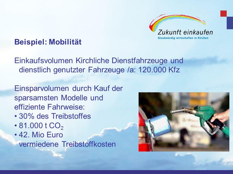 Beispiel: MobilitätEinkaufsvolumen Kirchliche Dienstfahrzeuge und dienstlich genutzter Fahrzeuge /a: 120.000 Kfz.