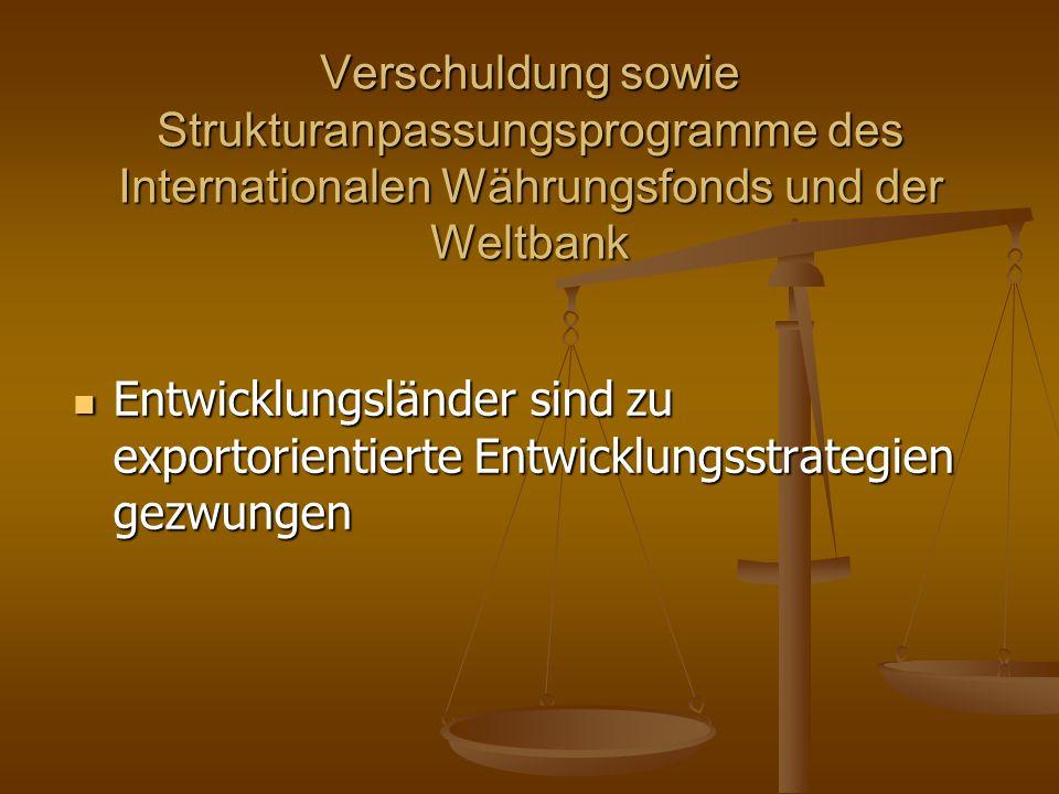 Verschuldung sowie Strukturanpassungsprogramme des Internationalen Währungsfonds und der Weltbank