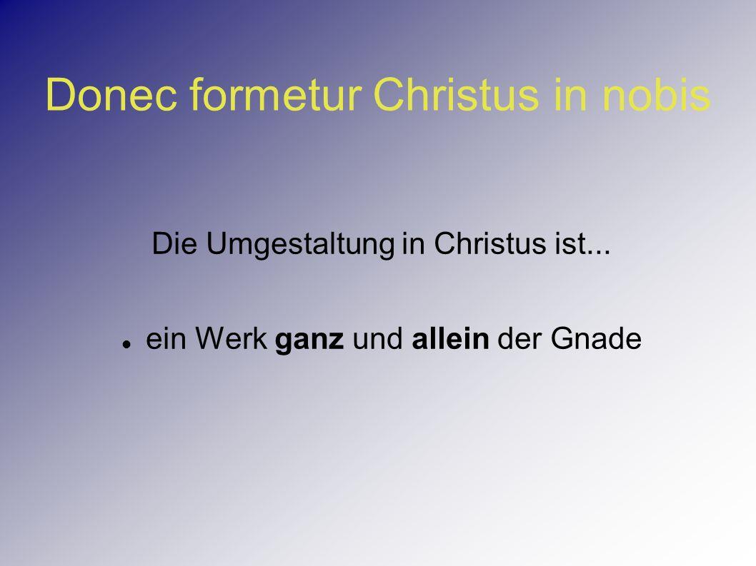 Donec formetur Christus in nobis