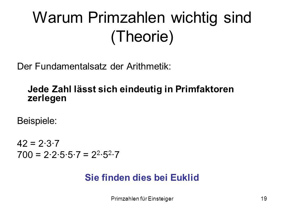 Warum Primzahlen wichtig sind (Theorie)