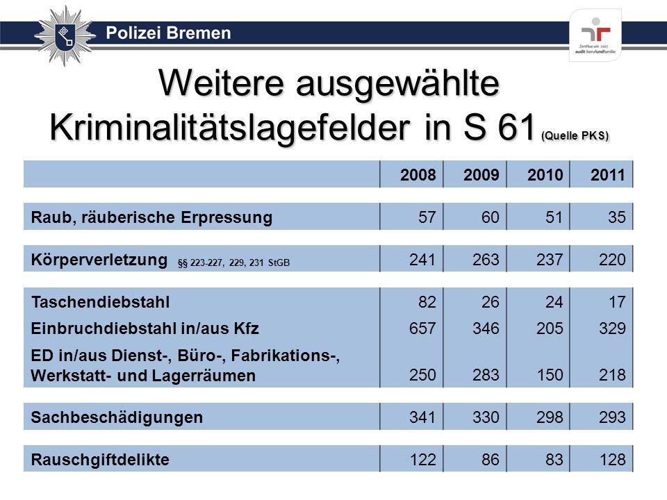 Weitere ausgewählte Kriminalitätslagefelder in S 61 (Quelle PKS)
