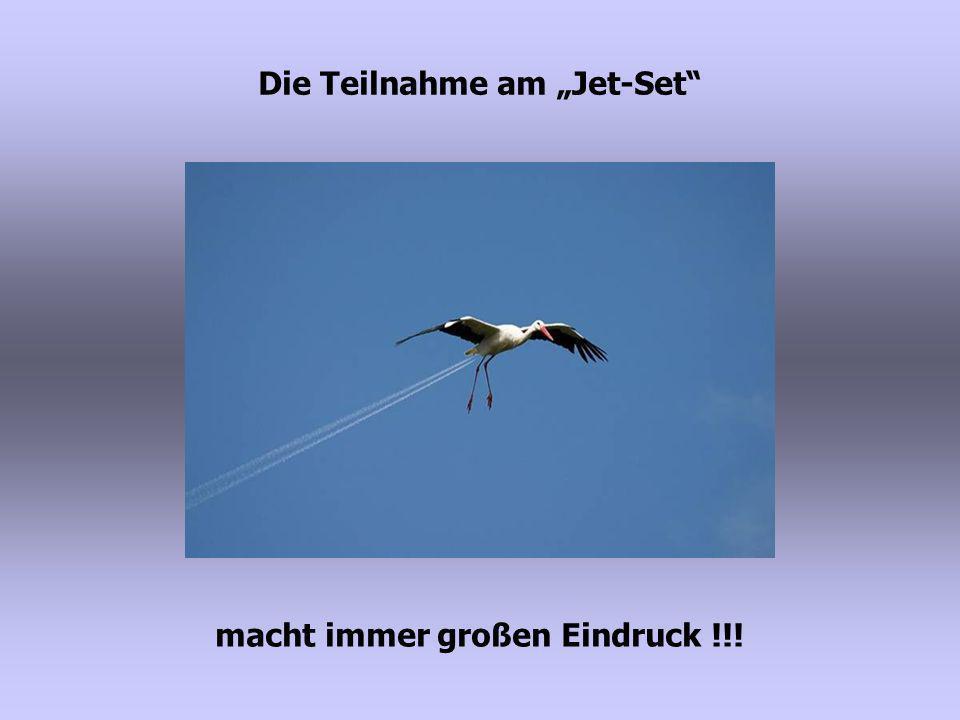 """Die Teilnahme am """"Jet-Set macht immer großen Eindruck !!!"""