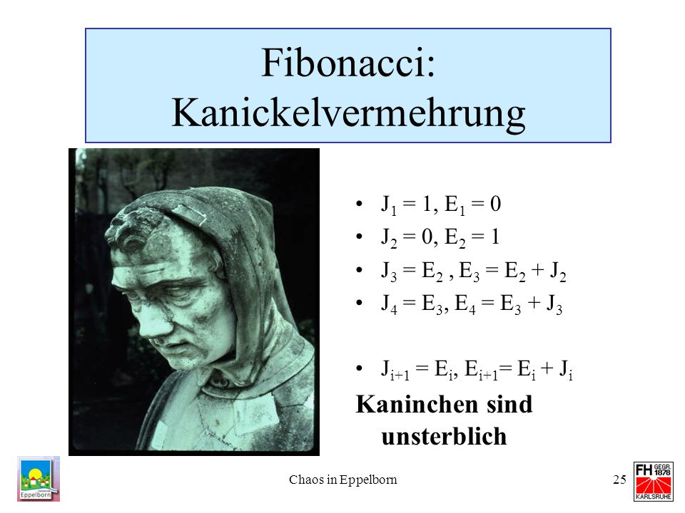 Fibonacci: Kanickelvermehrung