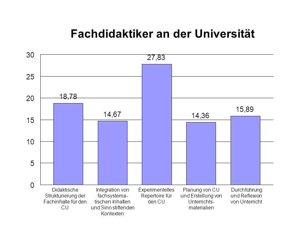 Fachdidaktiker an der Universität