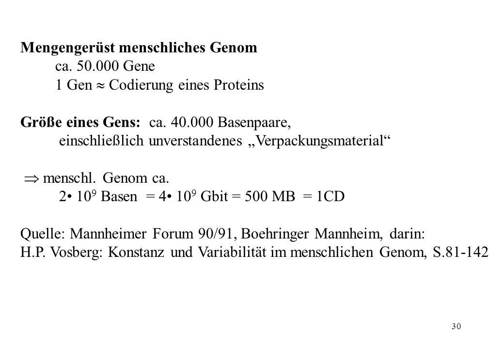 Mengengerüst menschliches Genom