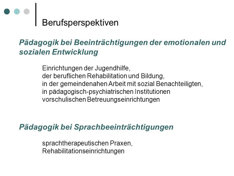 Berufsperspektiven Pädagogik bei Beeinträchtigungen der emotionalen und sozialen Entwicklung. Einrichtungen der Jugendhilfe,