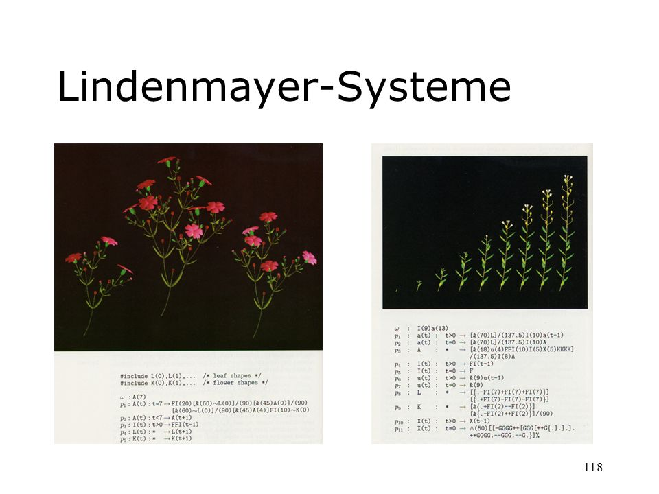 Lindenmayer-Systeme