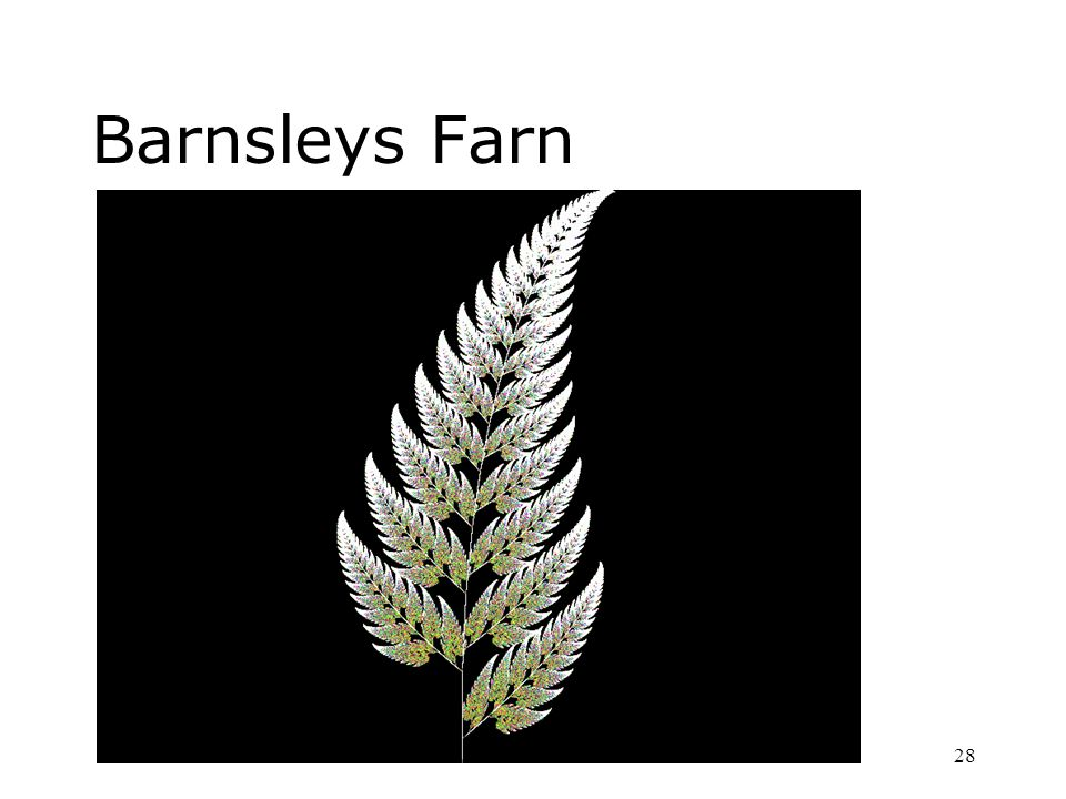 Barnsleys Farn