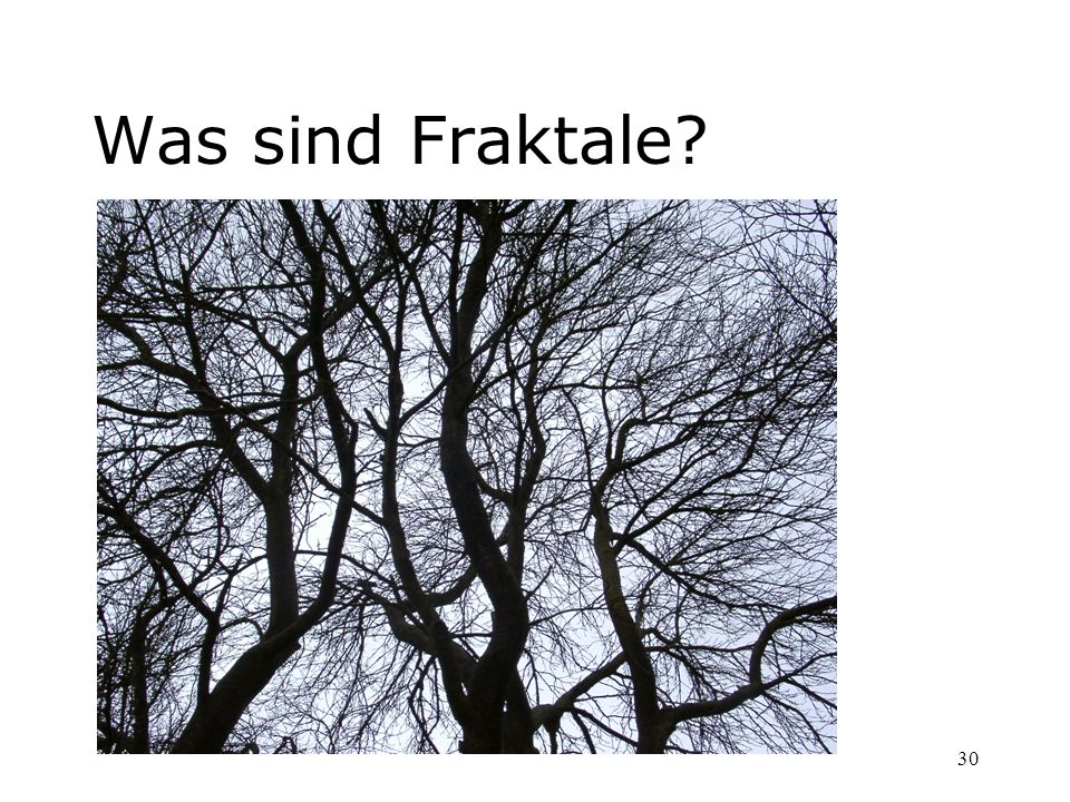 Was sind Fraktale