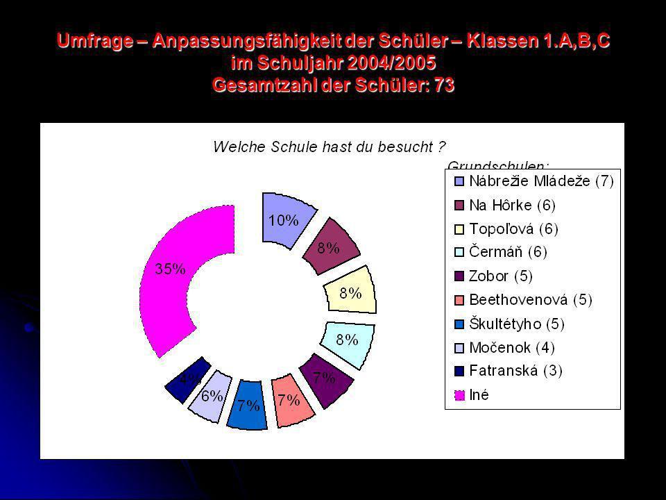 Umfrage – Anpassungsfähigkeit der Schüler – Klassen 1