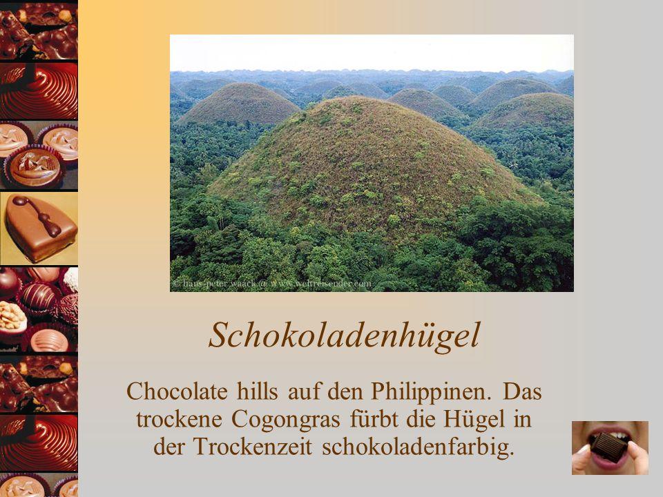 Schokoladenhügel Chocolate hills auf den Philippinen.