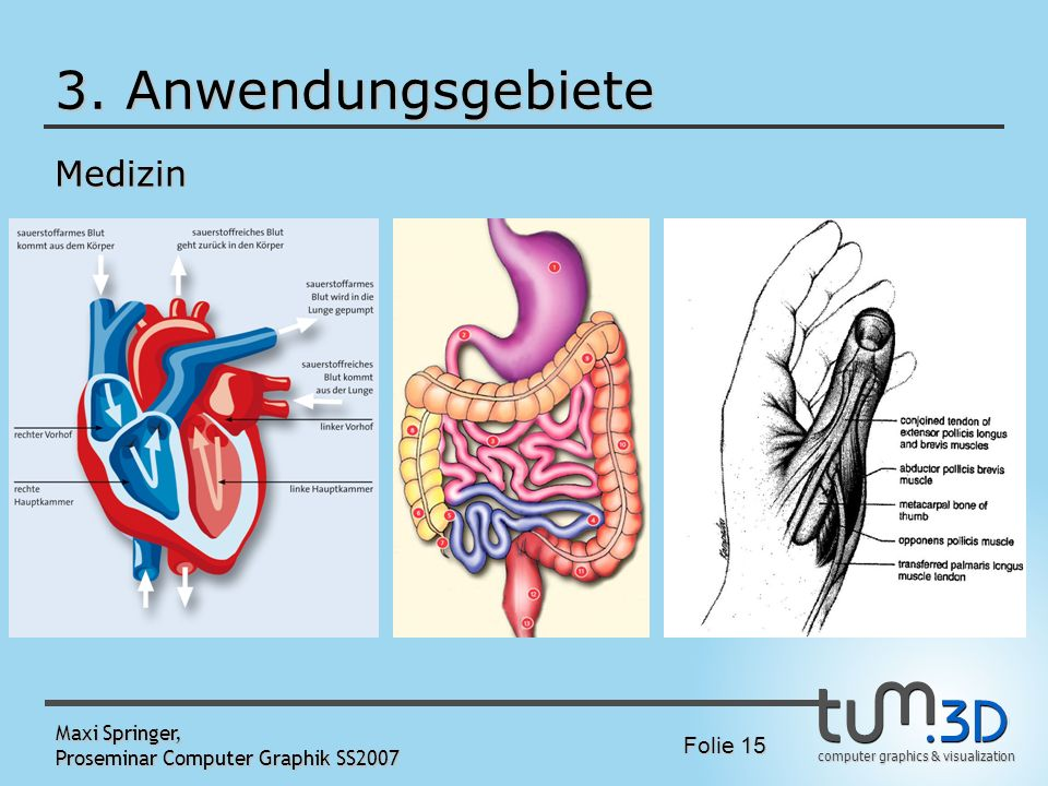 3. Anwendungsgebiete Medizin Maxi Springer,