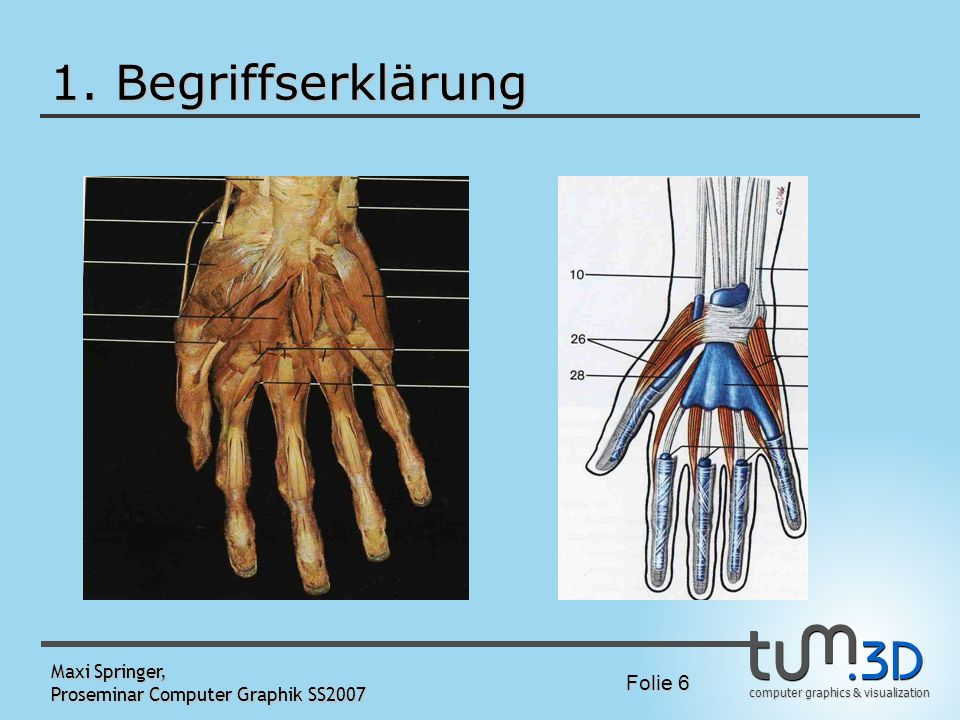 1. Begriffserklärung Maxi Springer, Proseminar Computer Graphik SS2007