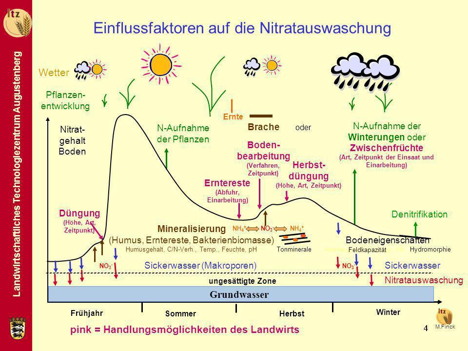 Einflussfaktoren auf die Nitratauswaschung