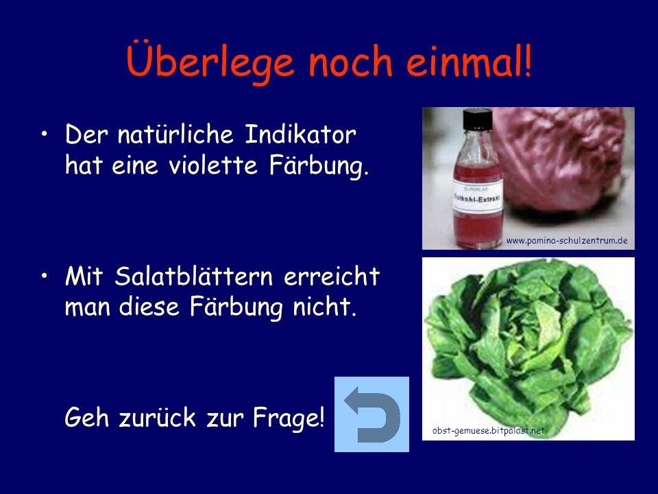 Überlege noch einmal! Der natürliche Indikator hat eine violette Färbung. Mit Salatblättern erreicht man diese Färbung nicht.