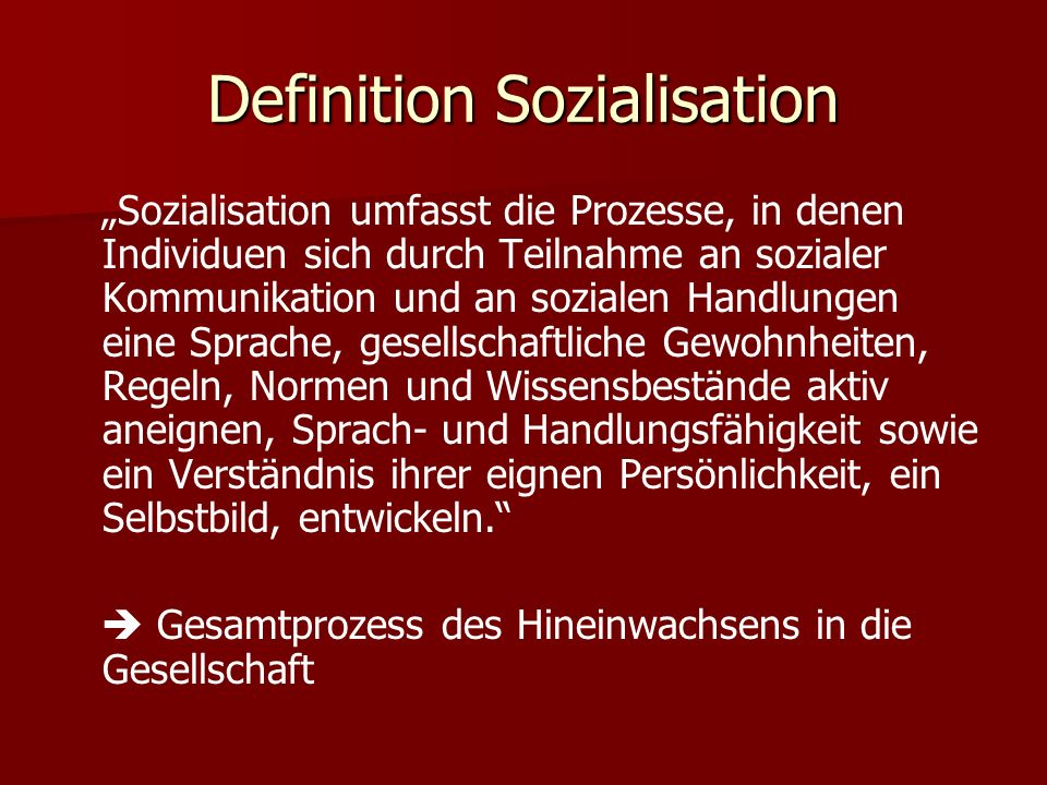 Definition Sozialisation
