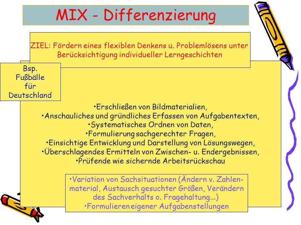 MIX - Differenzierung ZIEL: Fördern eines flexiblen Denkens u. Problemlösens unter. Berücksichtigung individueller Lerngeschichten.
