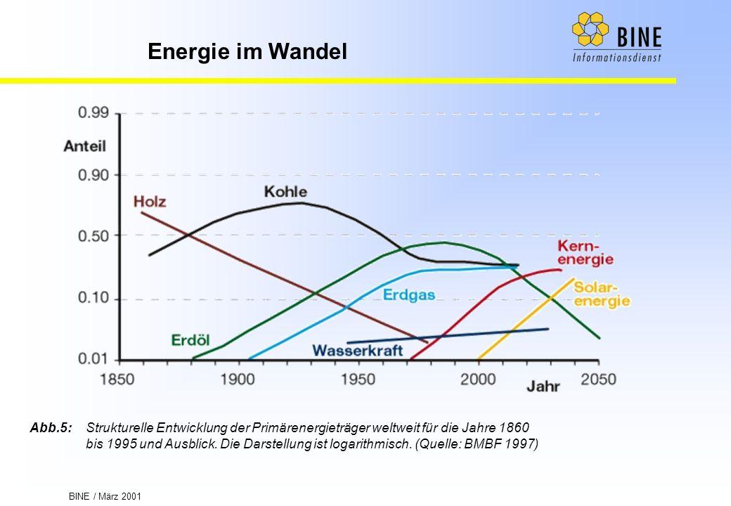 Abb.5: Strukturelle Entwicklung der Primärenergieträger weltweit für die Jahre 1860 bis 1995 und Ausblick.