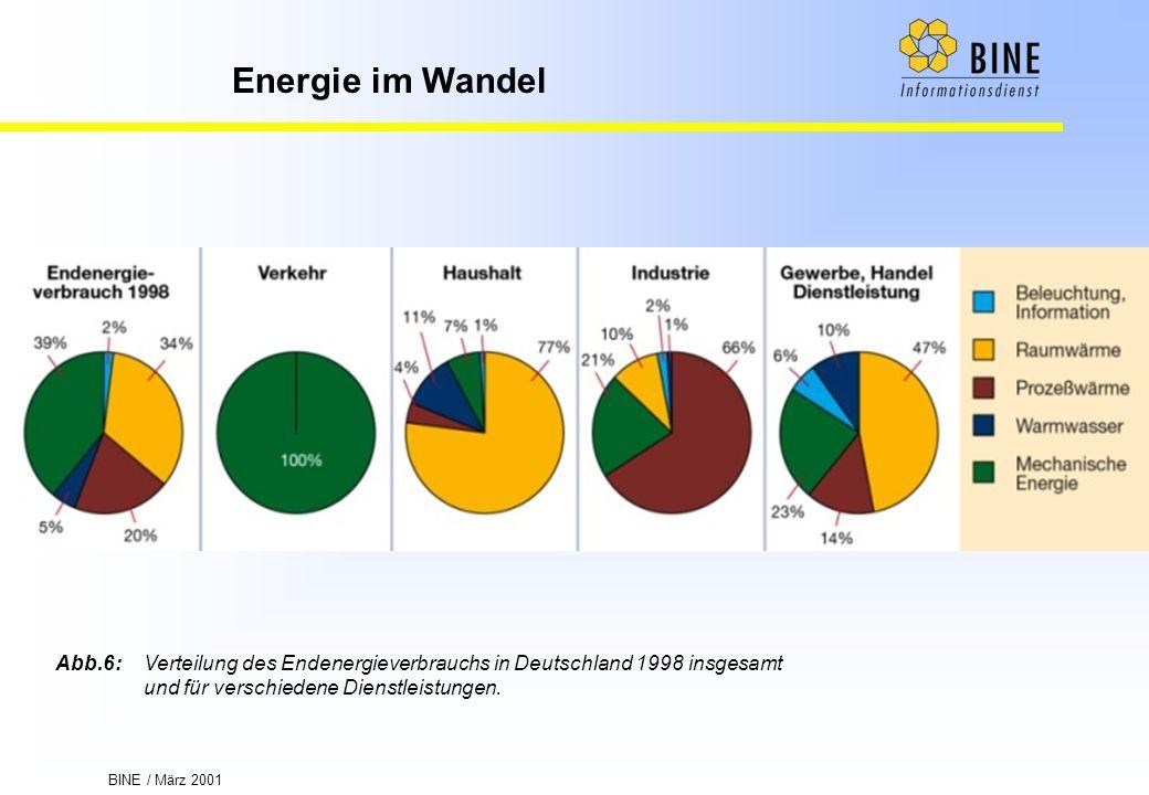Abb.6: Verteilung des Endenergieverbrauchs in Deutschland 1998 insgesamt und für verschiedene Dienstleistungen.