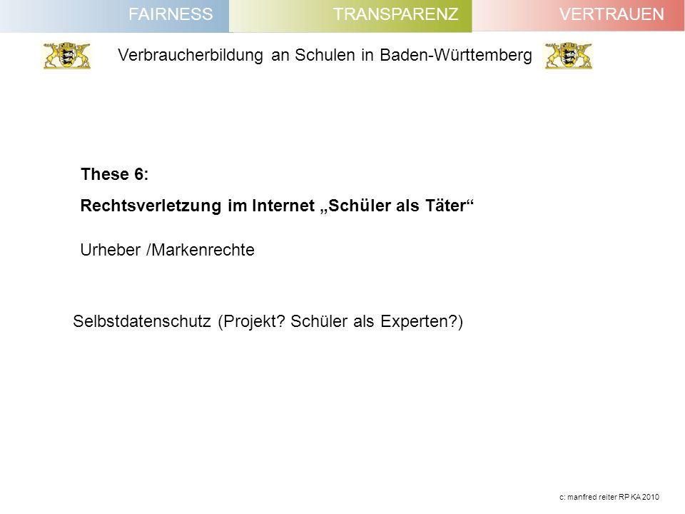 """These 6: Rechtsverletzung im Internet """"Schüler als Täter Urheber /Markenrechte."""