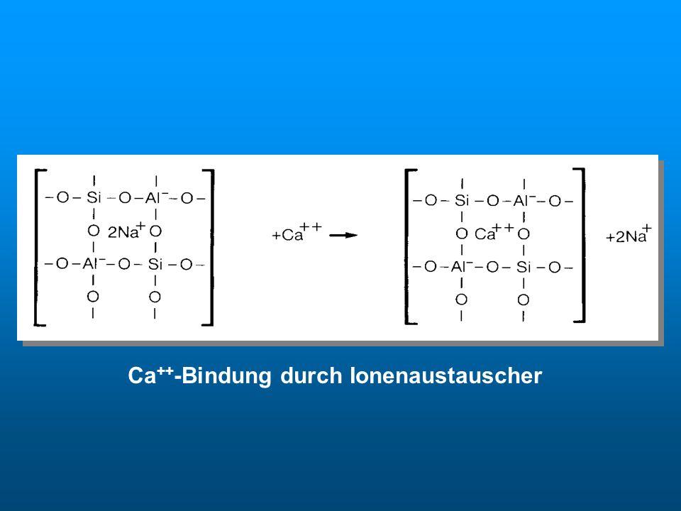 Ionenaustauscher Ca++-Bindung durch Ionenaustauscher