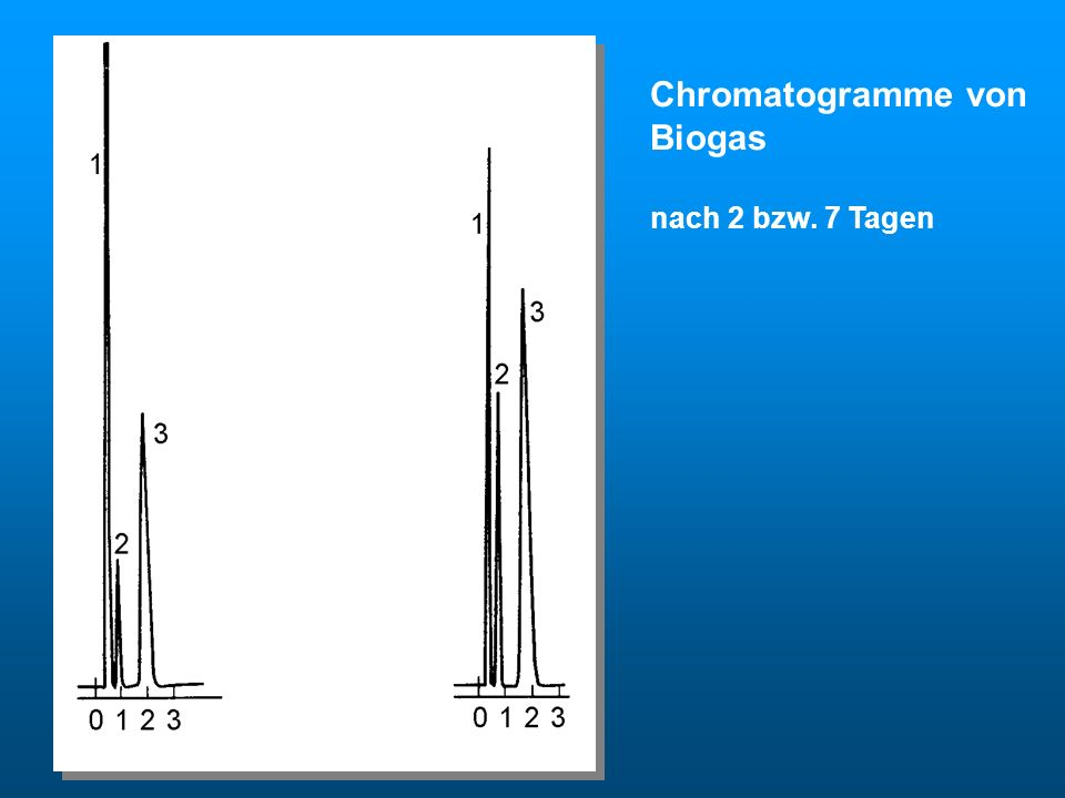Biogas Chromatogramme von Biogas nach 2 bzw. 7 Tagen