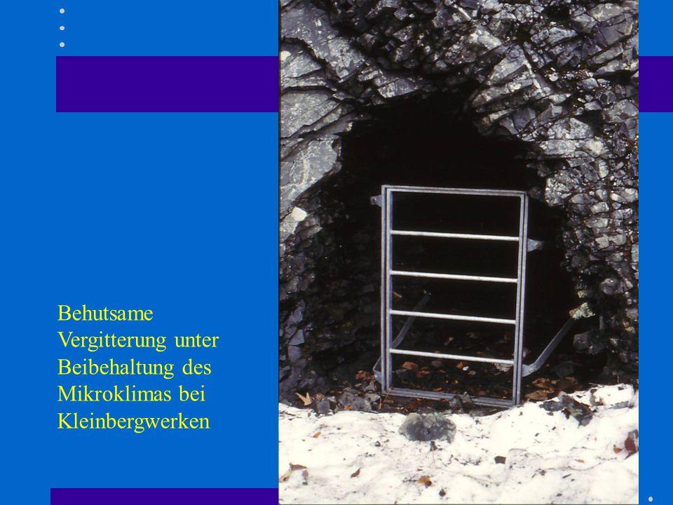 Behutsame Vergitterung unter Beibehaltung des Mikroklimas bei Kleinbergwerken