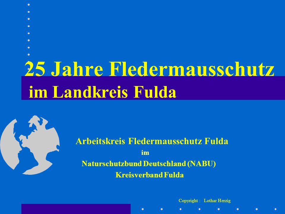 25 Jahre Fledermausschutz im Landkreis Fulda