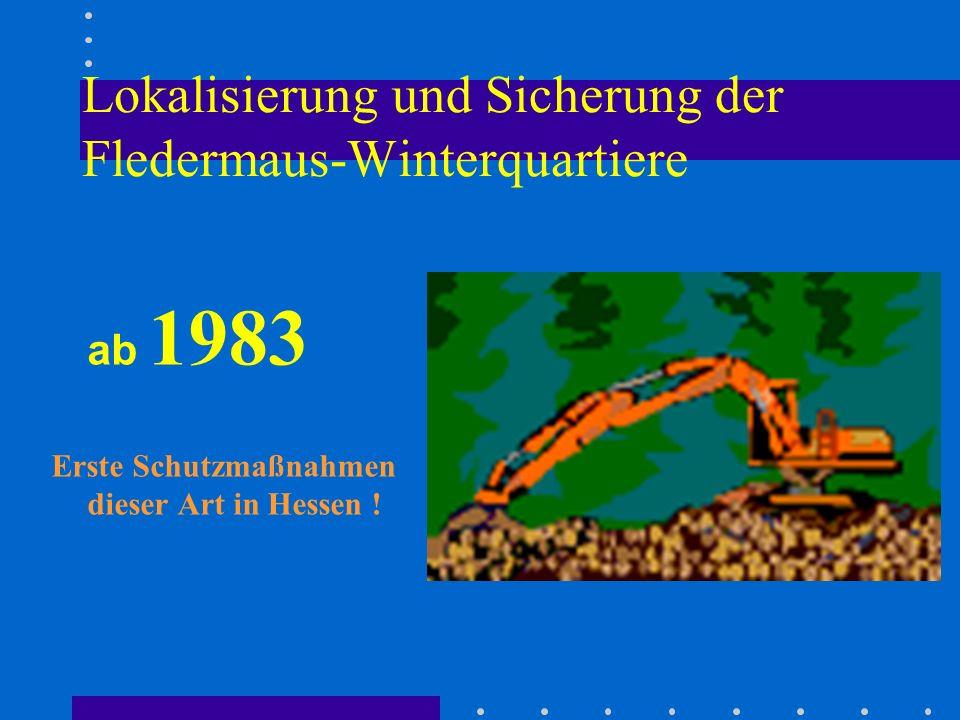 Lokalisierung und Sicherung der Fledermaus-Winterquartiere