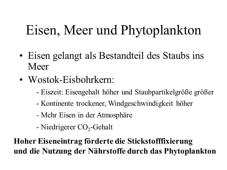 Eisen, Meer und Phytoplankton