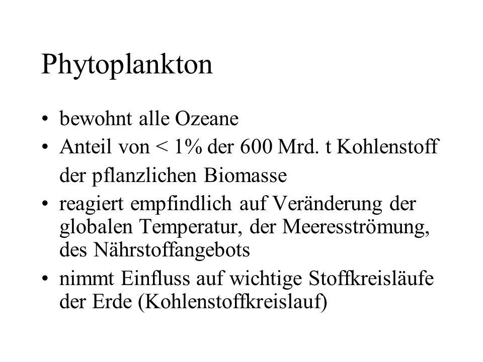 Phytoplankton bewohnt alle Ozeane