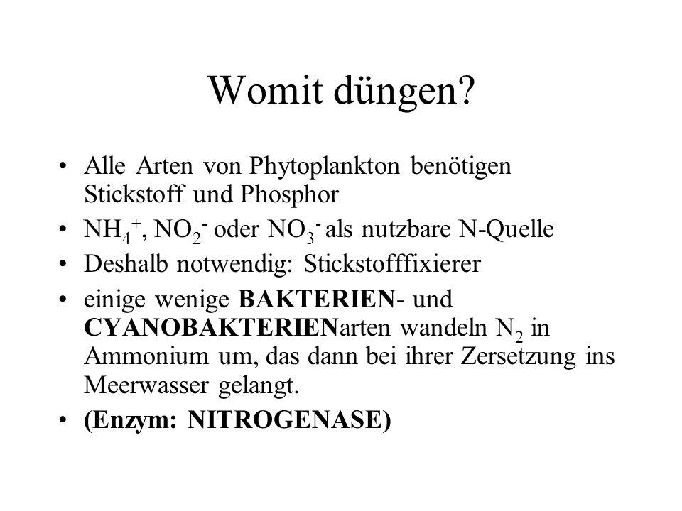 Womit düngen Alle Arten von Phytoplankton benötigen Stickstoff und Phosphor. NH4+, NO2- oder NO3- als nutzbare N-Quelle.