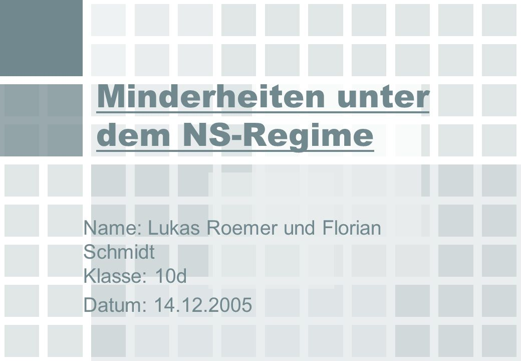 Minderheiten unter dem NS-Regime