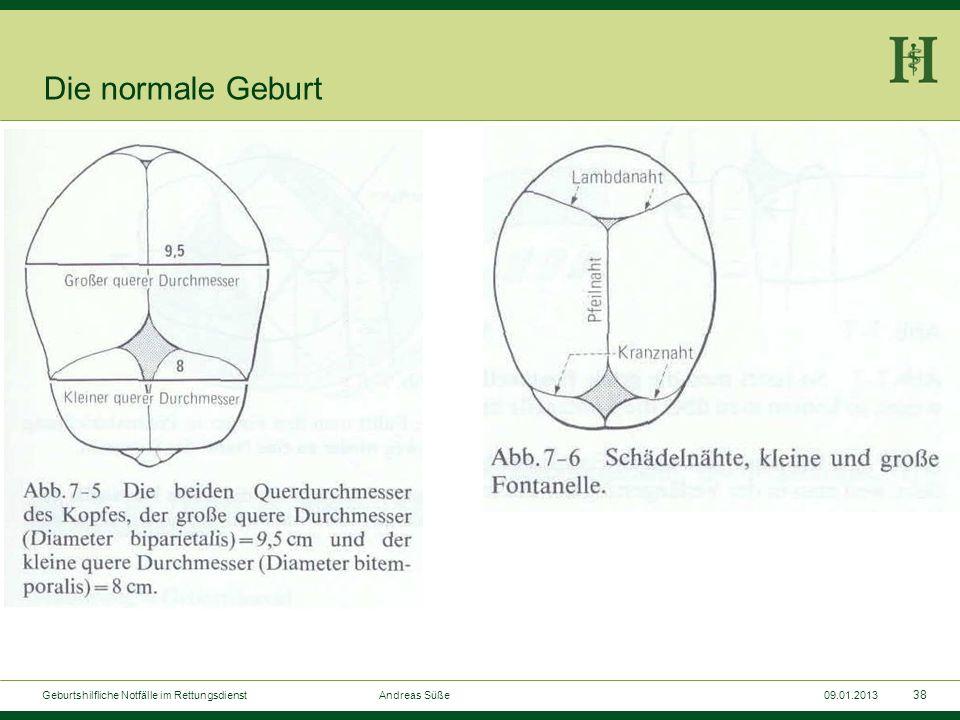 Die normale Geburt Geburtshilfliche Notfälle im Rettungsdienst Andreas Süße.