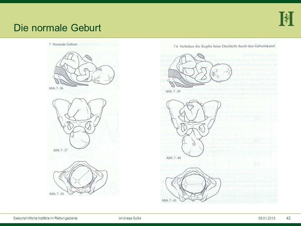 Die normale GeburtGeburtshilfliche Notfälle im Rettungsdienst Andreas Süße.