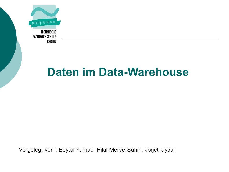 Daten im Data-Warehouse