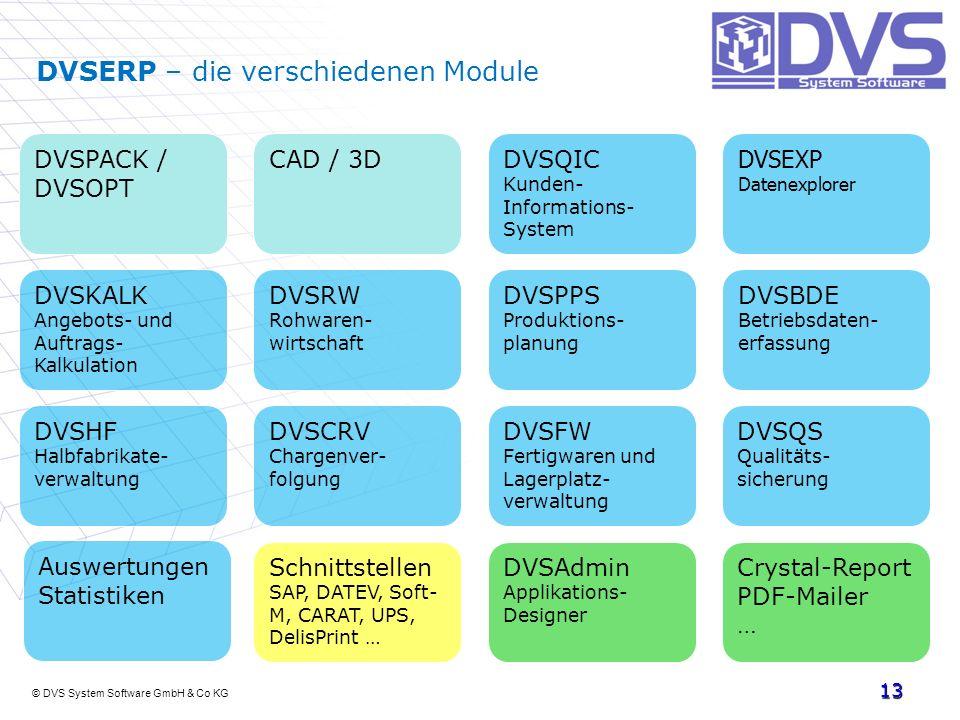 DVSERP – die verschiedenen Module