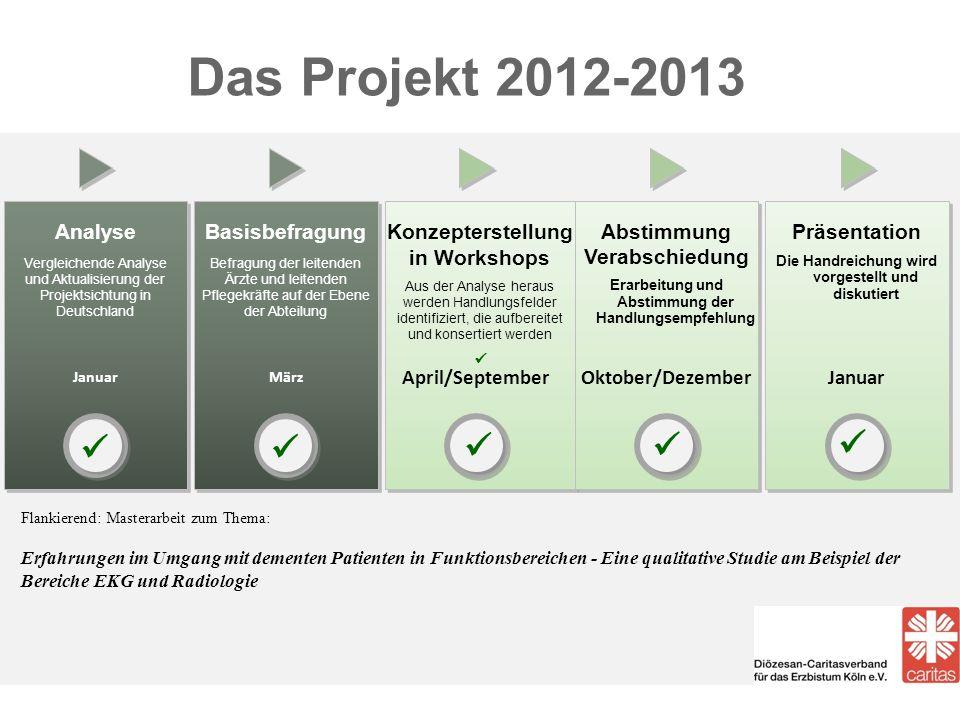 Das Projekt 2012-2013     Analyse Basisbefragung Konzepterstellung