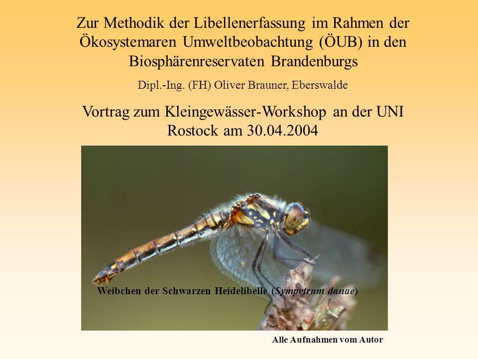 Vortrag zum Kleingewässer-Workshop an der UNI Rostock am 30.04.2004