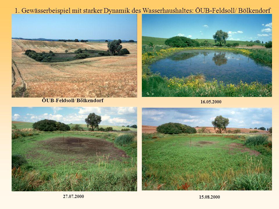 1. Gewässerbeispiel mit starker Dynamik des Wasserhaushaltes: ÖUB-Feldsoll/ Bölkendorf