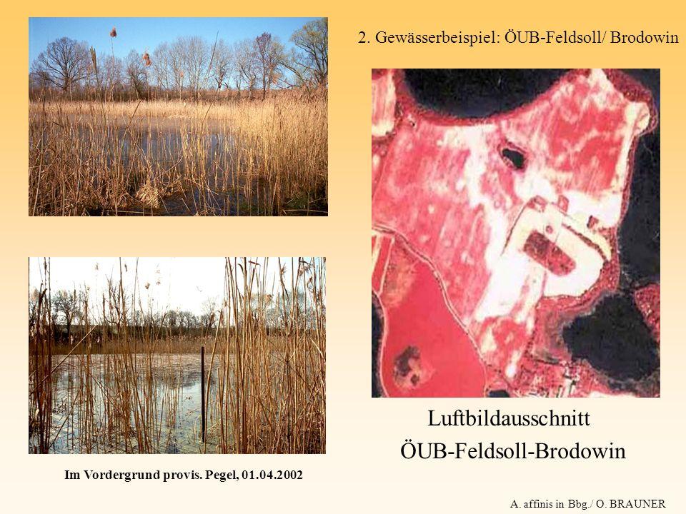 ÖUB-Feldsoll-Brodowin