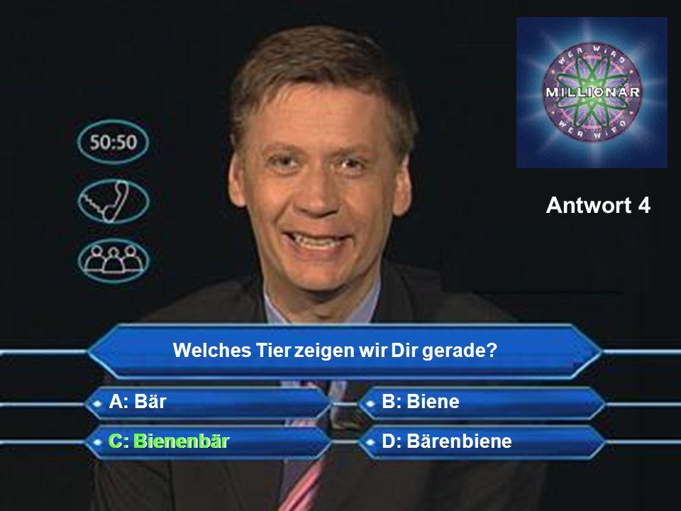Antwort 4 Welches Tier zeigen wir Dir gerade A: Bär B: Biene