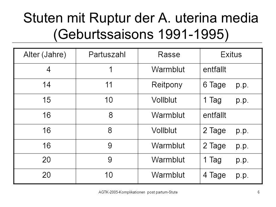 Stuten mit Ruptur der A. uterina media (Geburtssaisons 1991-1995)
